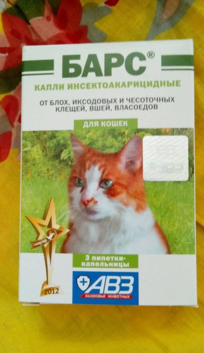 Капли барс от блох для кошек и котят: инструкция по применению