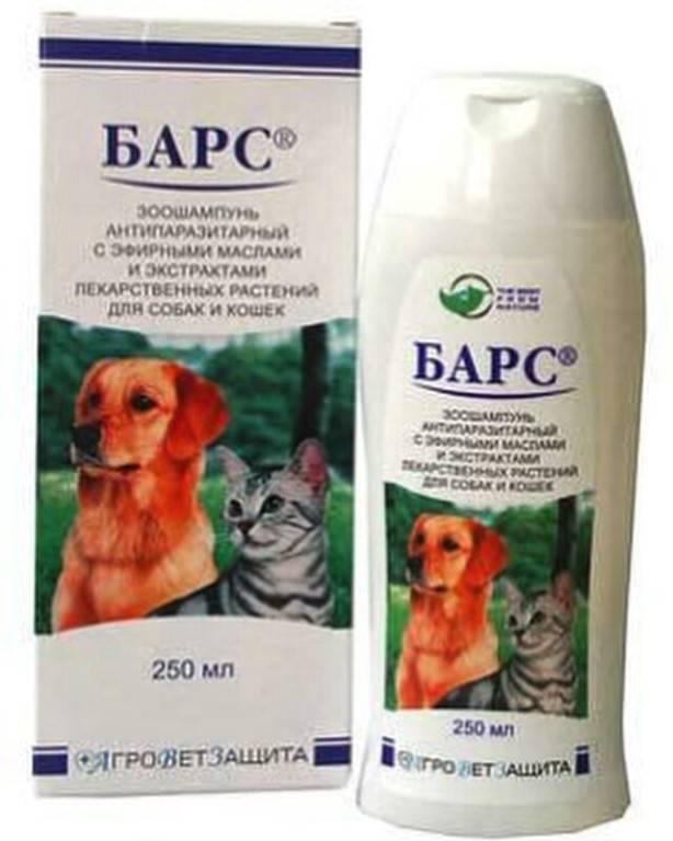 Шампуни от блох для кошек и собак: обзор популярных средств и инструкции по правильному применению
