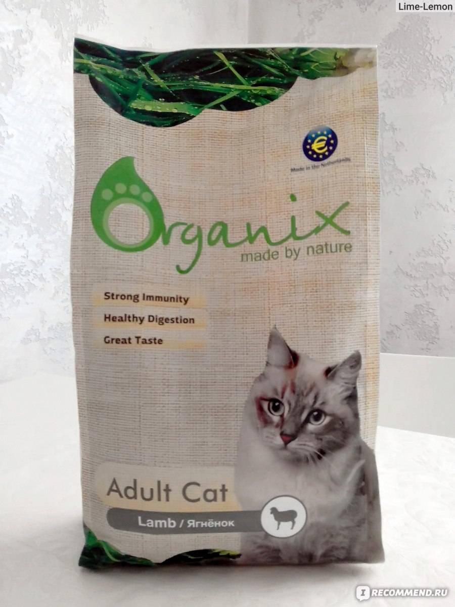 Гипоаллергенный корм для кошек: обзор популярных производителей