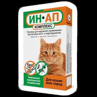 Ушной клещ у кошек: симптомы, лечение, профилактика отодектоза