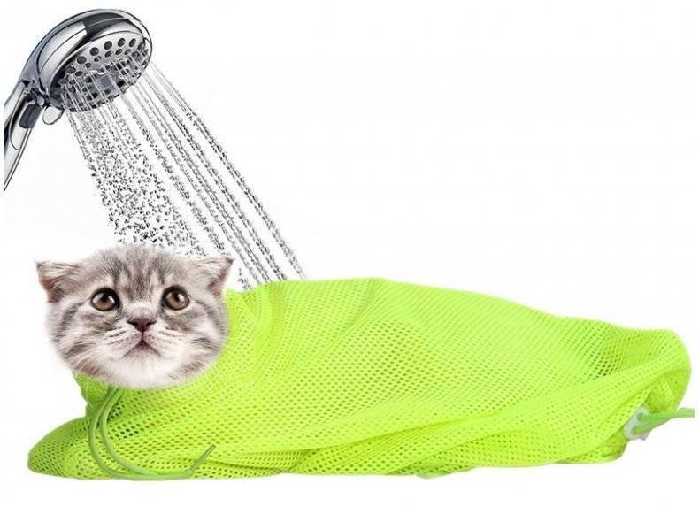 Сетка-мешок для купания кошек – в чем преимущества использования приспособления?
