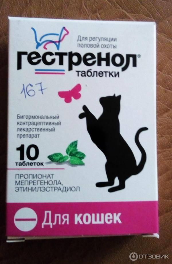 Контрацептивы для кошек