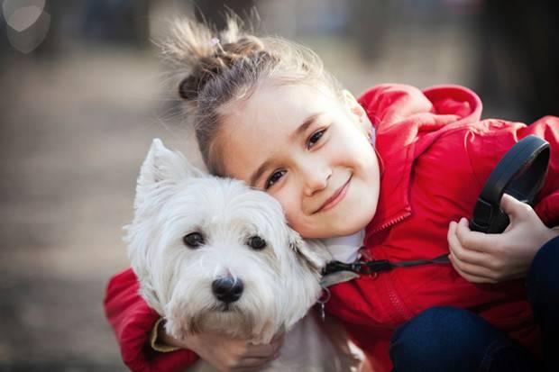 Пет-терапия или влияние животных на человека. что такое анималотерапия и в чем ее польза для детей? противопоказания к использованию анималотерапии