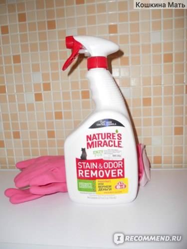 Как избавиться от кошачьего запаха в квартире – 15 лучших рецептов от запаха кошачьей мочи
