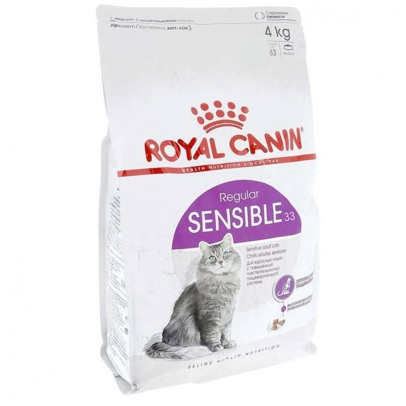Корма для пожилых кошек (сухой и влажный), чем кормить старое животное в зависимости от возраста, требования к рациону питомца