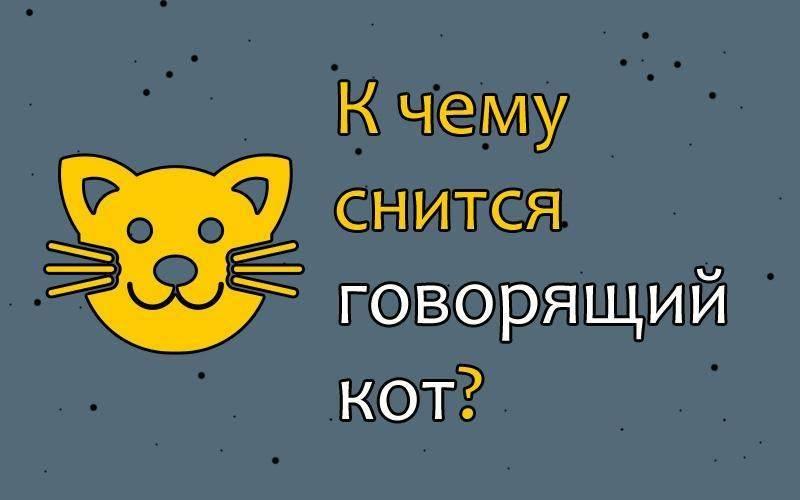 Сонник серый кот убежал. к чему снится серый кот убежал видеть во сне - сонник дома солнца