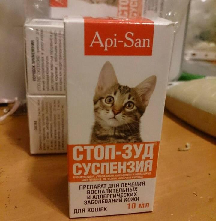 Антигистаминные препараты для кошек: от аллергии, список, от зуда, дозировка, как принимать, таблетки, капли
