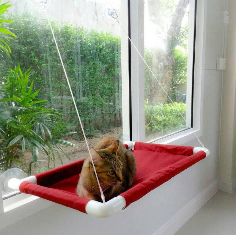 Лежанка для кошки — примеры своими руками и из различных материалов