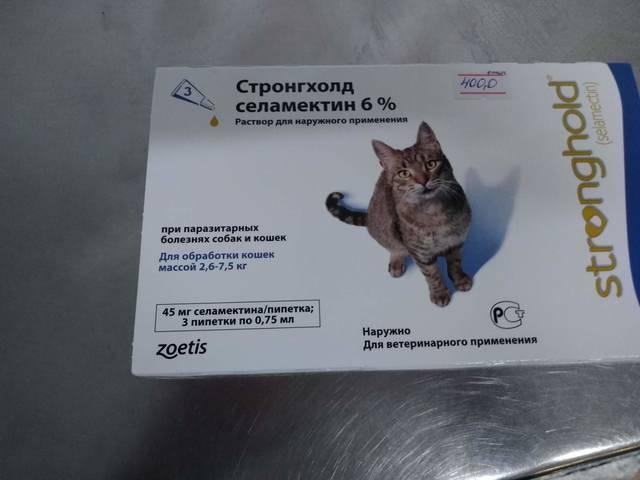 Стронгхолд для кошек: цена капель, инструкция по применению лекарств русский фермер