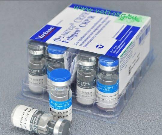 Вакцина для кошек фелиген: инструкция, противопоказания
