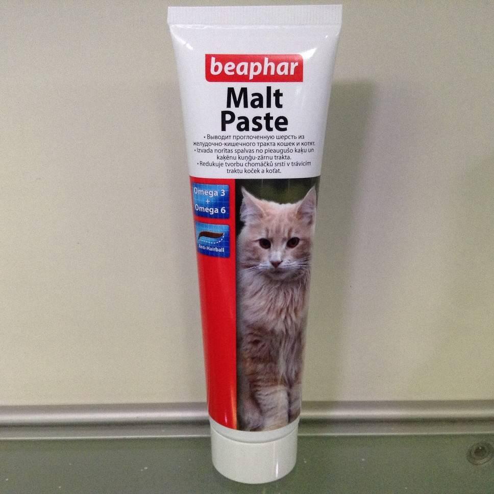 Мальт паста для кошек от шерсти в желудке: описание, принцип действия, разновидности, инструкция по применению