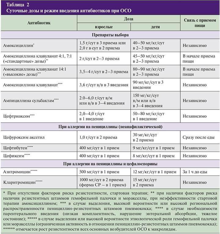 Обзор и применение антибиотиков для котов с широким спектром действия