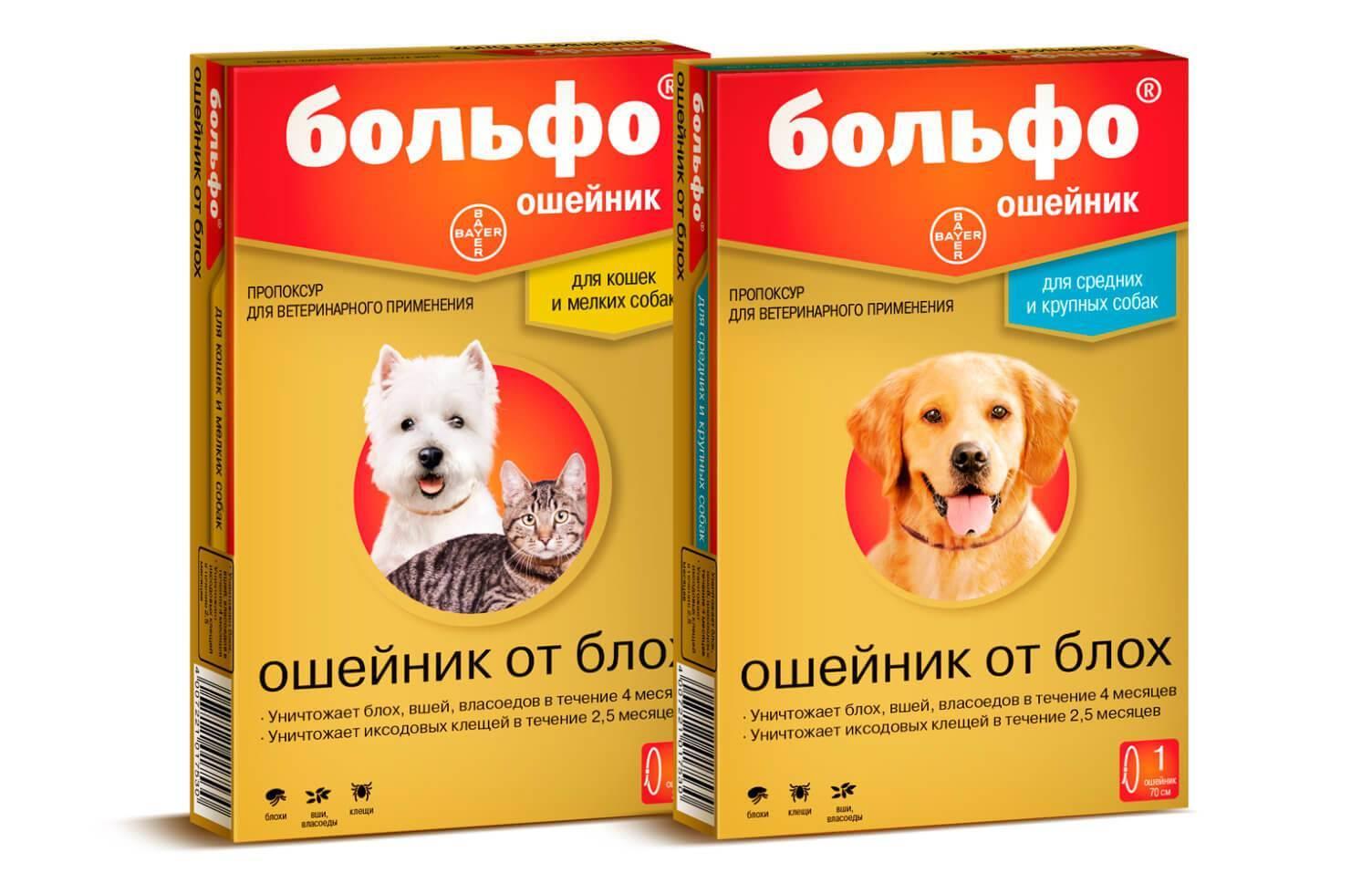 Форесто ошейник для собак