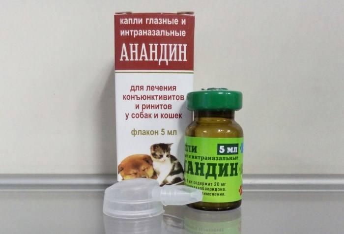 Инструкция по применению максидина для кошек