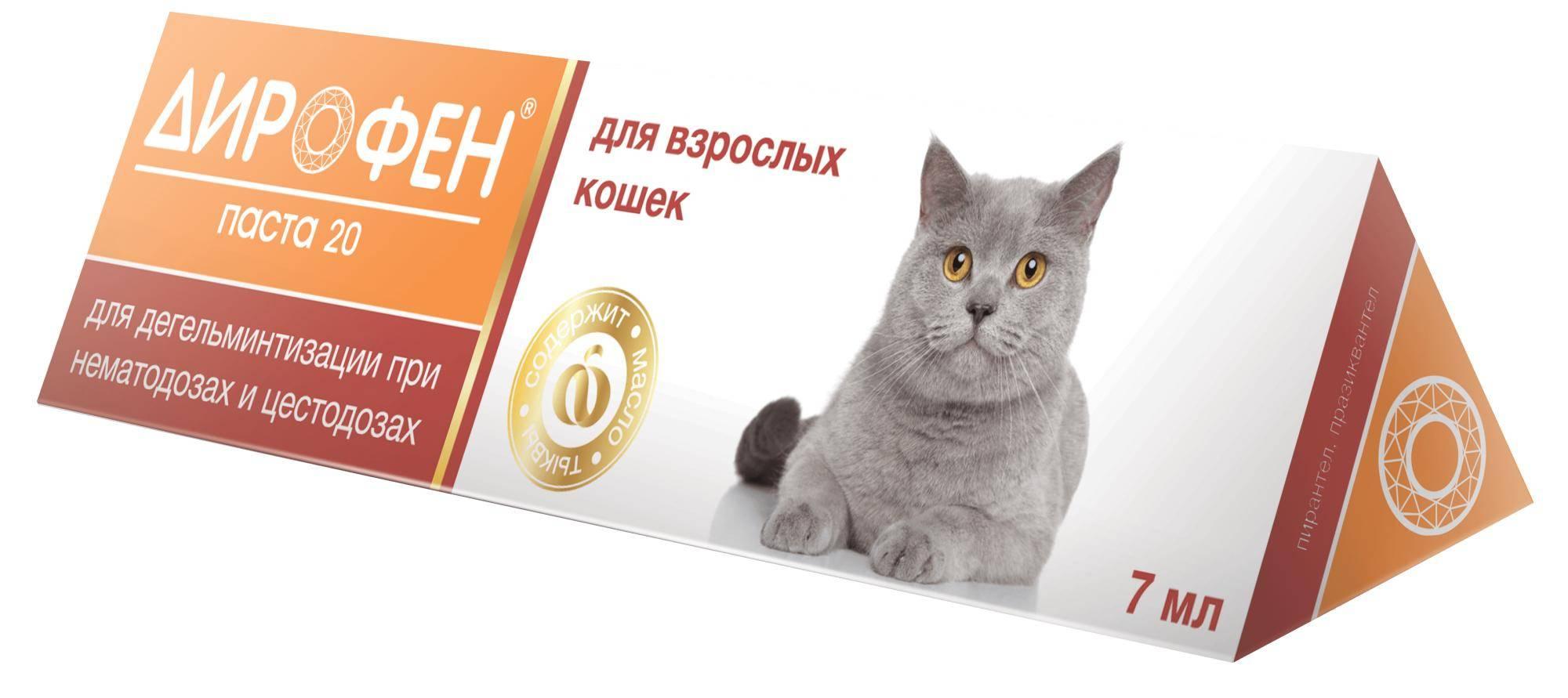 Дирофен от глистов для кошек: инструкция по применению