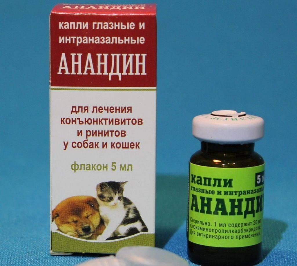 Капли для глаз коту при воспалении