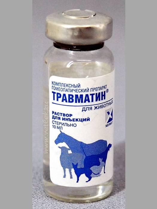 Травматин для кошек и собак – инструкция по применению, плюсы и минусы препарата, отзывы