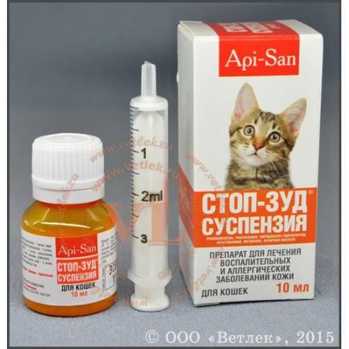 Антигистаминные препараты для кошек от аллергии: список, какие можно, дозировка