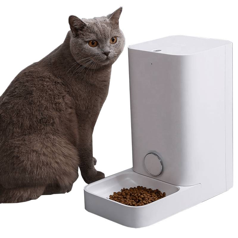 Автоматическая кормушка для кошек: обзор и рекомендации
