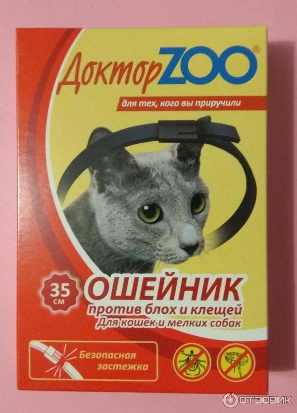 Насколько эффективен ошейник от блох для кошек?