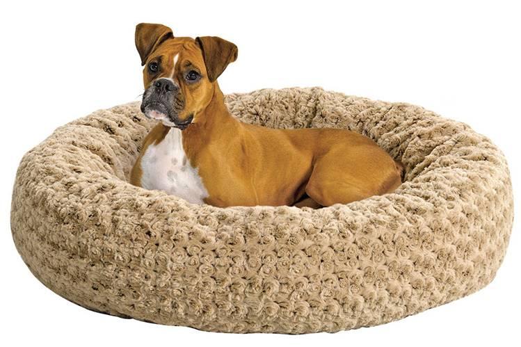 Как получить щенячку и какие еще документы ркф нужно сделать при покупке собаки, а также сколько это стоит
