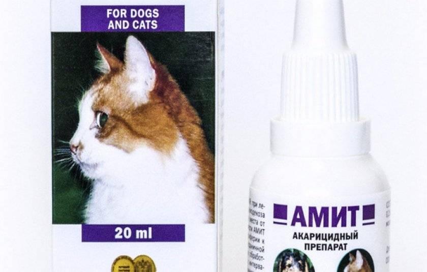 Ушные капли и лосьоны для кошек: состав, особенности использования, рейтинг средств, отзывы