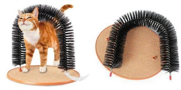 Как правильно вычесывать кошку - советы ветеринаров