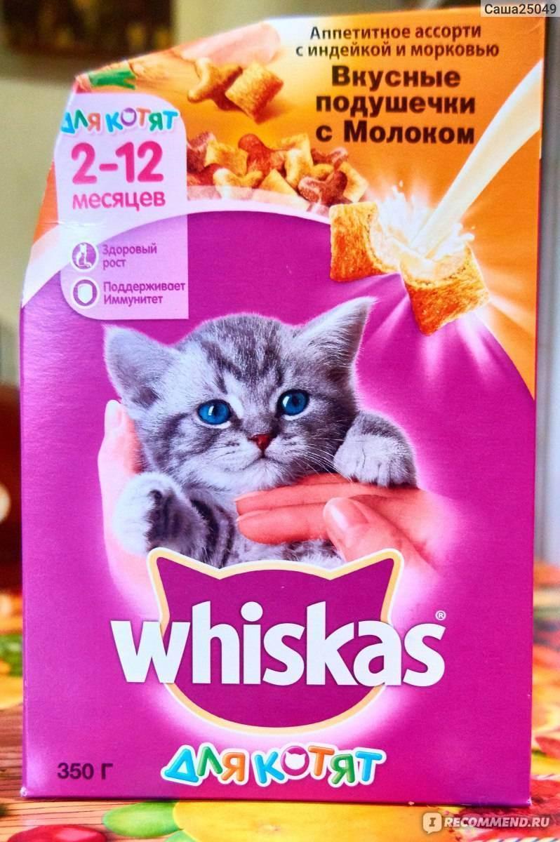 Подробный обзор влажных и сухих кормов whiskas для котят и взрослых котов