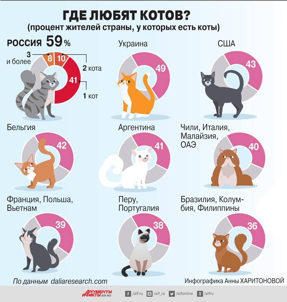Продолжительность жизни кошек и котов   средняя, составляет лет, таблица
