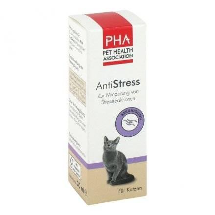 Успокоительные для кошек: обзор препаратов и их эффективность