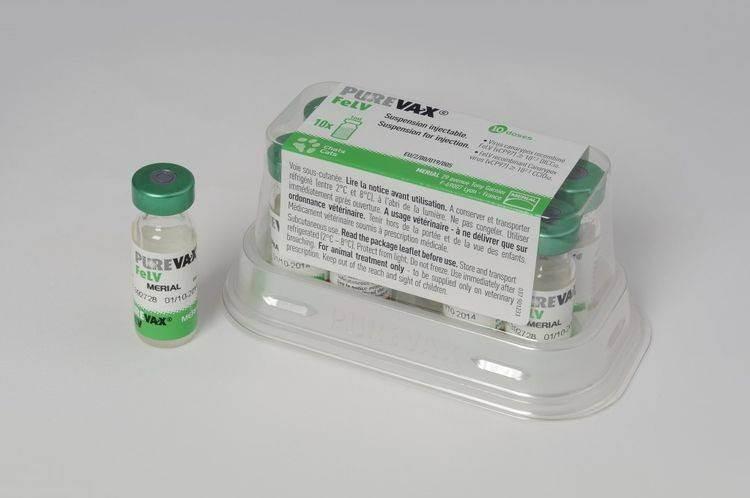 Пуревакс для кошек: вакцина rcpch с хламидиозом, инструкция по применению