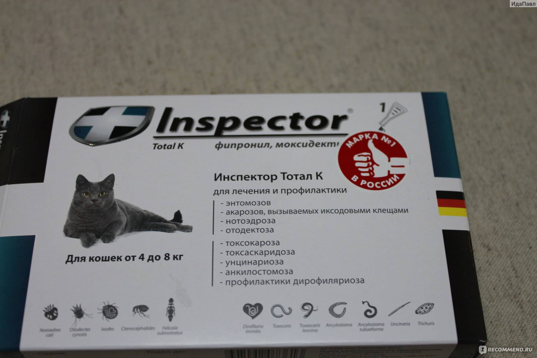 Инспектор тотал для кошек: показания и инструкция по применению, отзывы, цена
