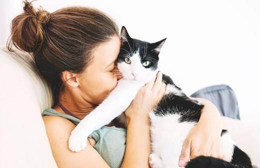 Аллергия на животных как избавиться