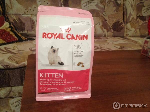 Корм для кошек роял канин: отзывы и обзор состава