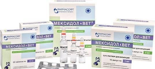 Мексидол-вет для собак и кошек: инструкция по применению, описание, противопоказания, побочные действия | препараты | наши лучшие друзья