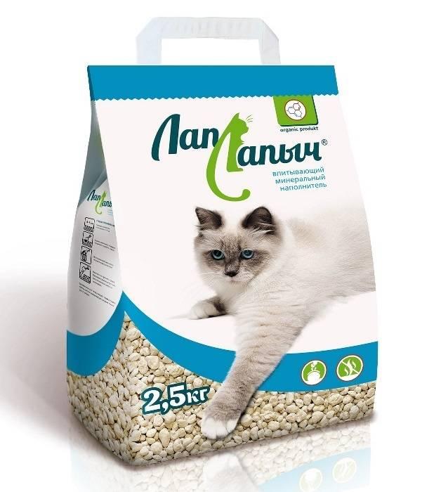 Какой наполнитель для котят лучше использовать в кошачьем туалете
