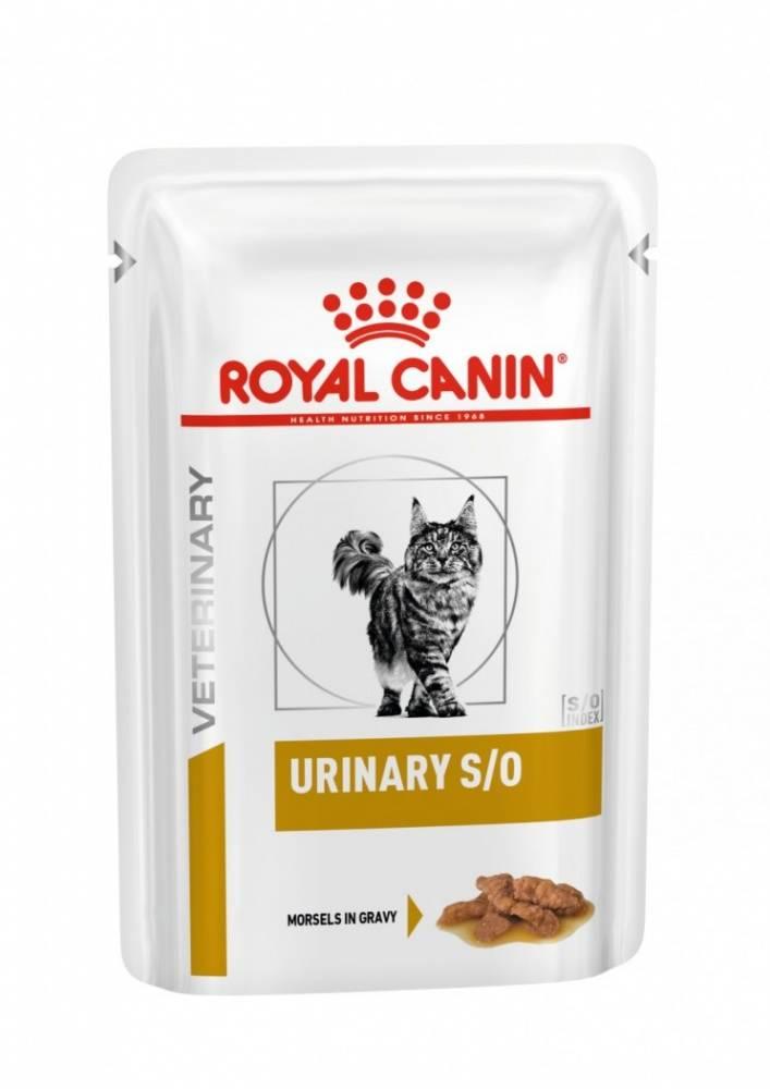 Варианты кормления кошки больной мочекаменной болезнью: примеры лечебного питания