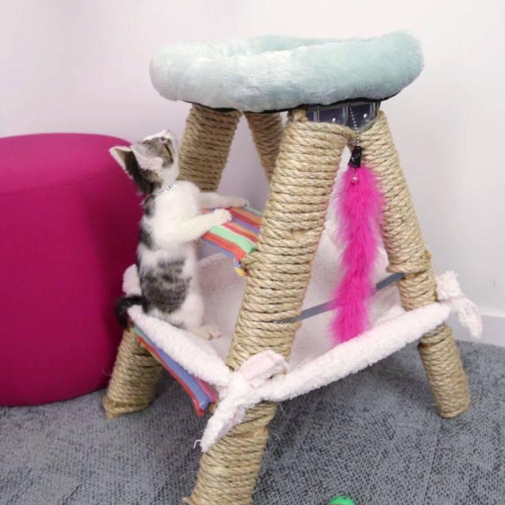 Как сделать кошку: мастер-класс и руководство как и из чего можно сделать поделку в виде кошки (инструкция + 110 фото)