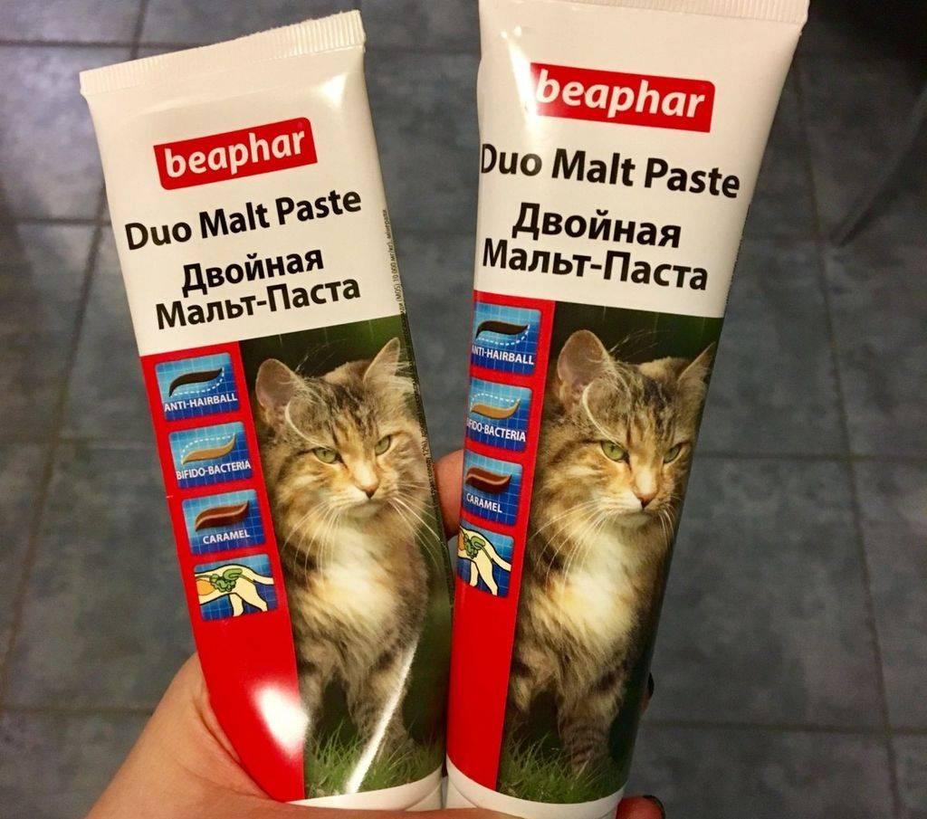 Мальт паста для кошек: инструкция по применению средств для вывода шерсти от разный производителей