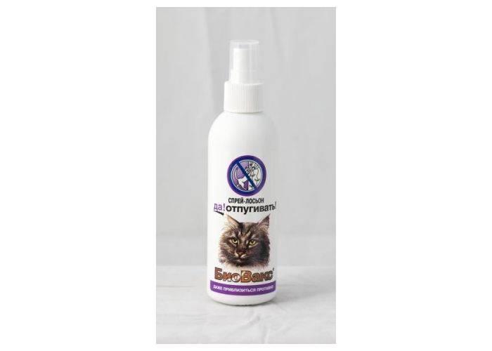 Какие запахи больше всего не любят кошки, чем отпугнуть кота, чтобы он не гадил дома?
