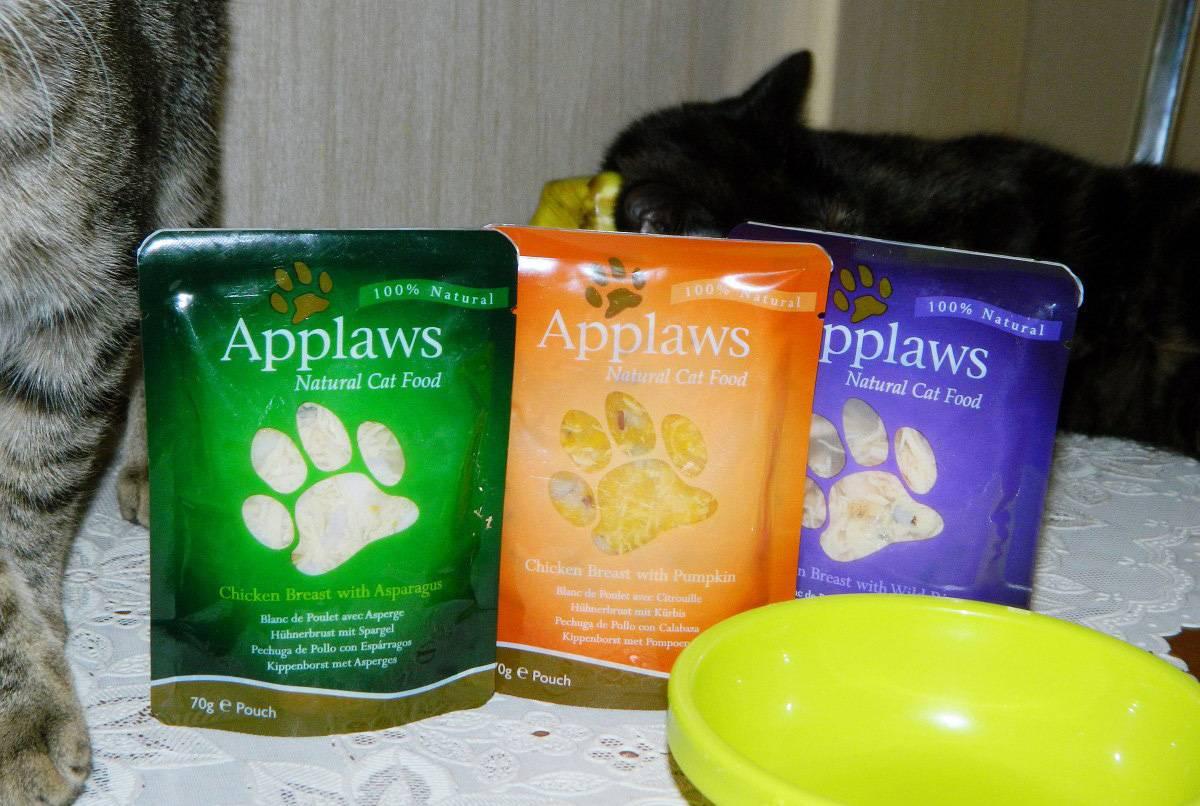Berkley - корм для кошек, его виды, состав, плюсы и минусы, отзывы о нем ветеринаров и владельцев животных