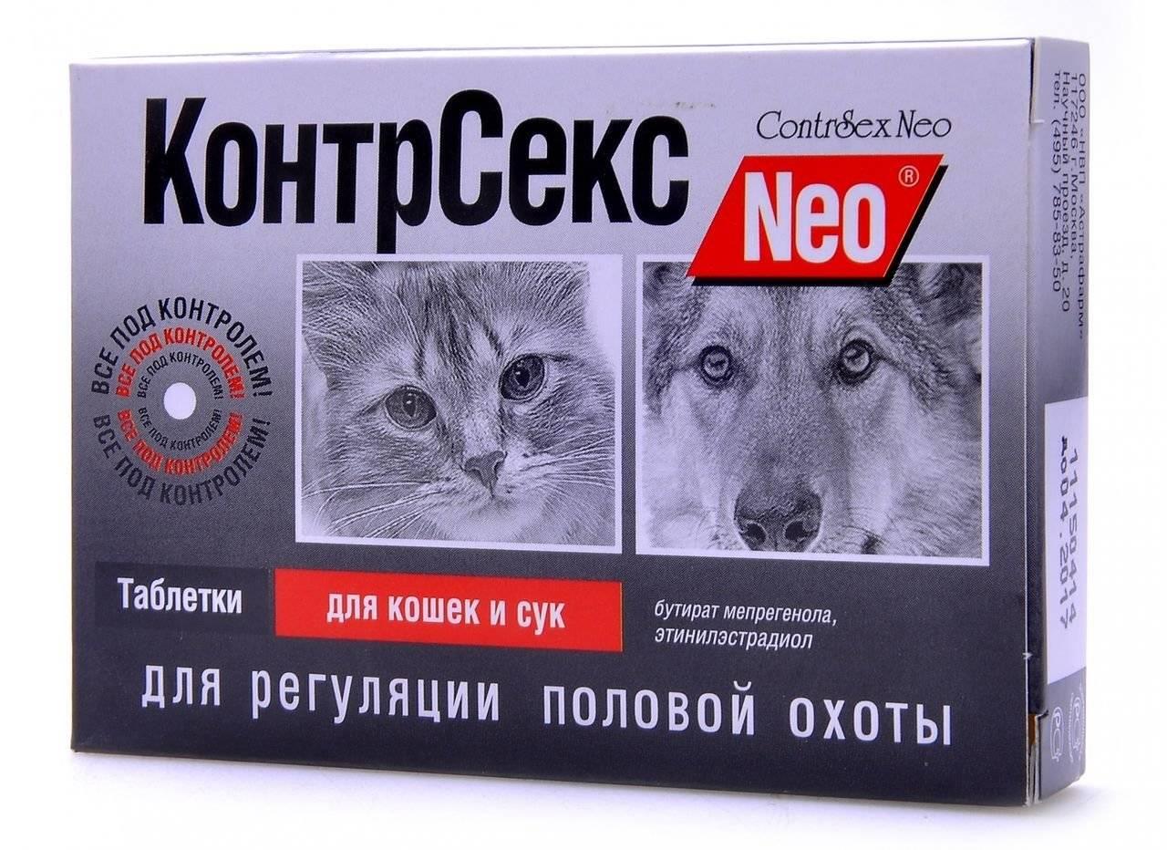 ᐉ капли для кота от гуляния какие лучше - zoo-mamontenok.ru