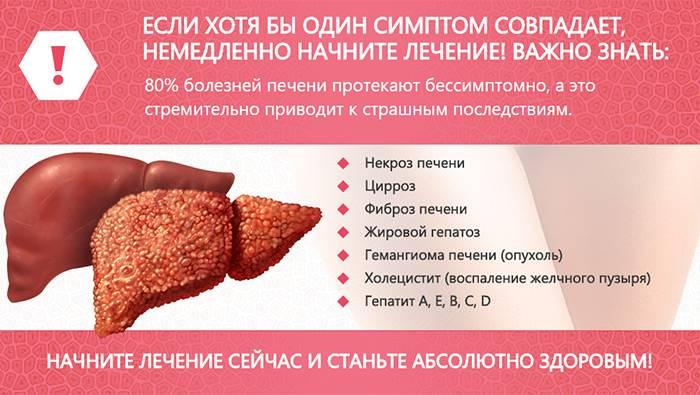 Болезни кошек: распространенные недуги, симптомы и рекомендации специалистов