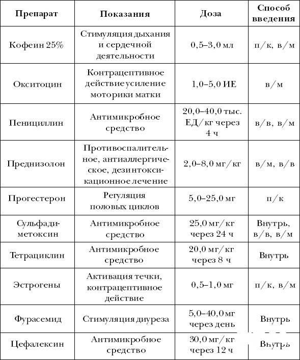 Инструкция по применению препарата ронколейкин для кошек