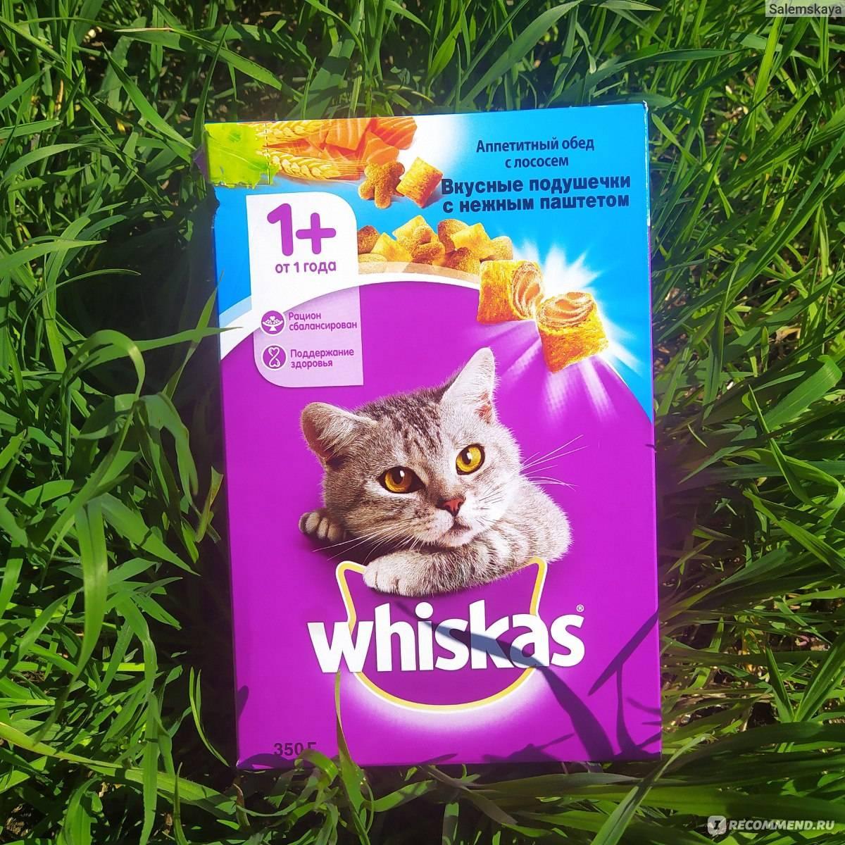 Почему нельзя кормить кошку вискасом?