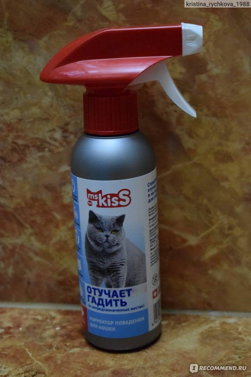 «антигадин для кошек», или как отучить своего любимца гадить где попало