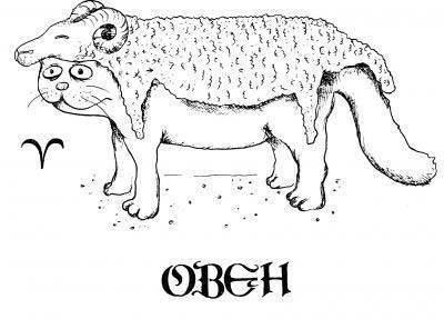 Астрологи выяснили какая порода кошек подходит вам по знаку зодиака