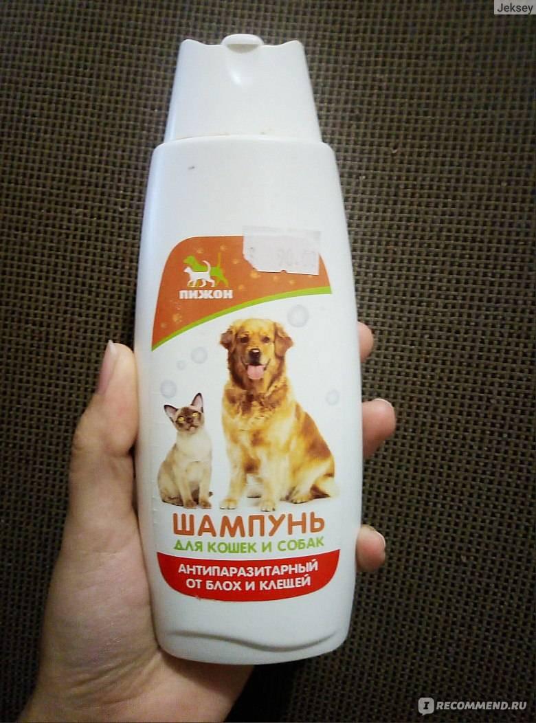 Как в домашних условиях вывести у кошек блох, избавиться раз и навсегда русский фермер