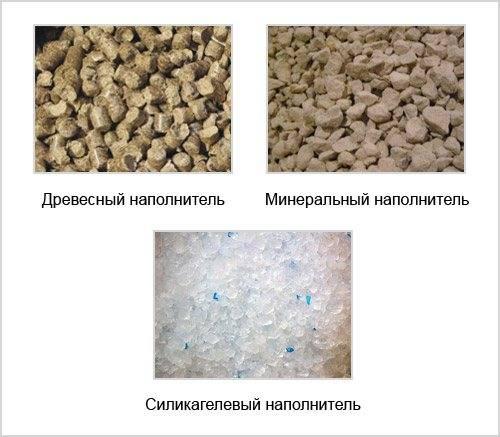 Виды наполнителей для кошачьего туалета