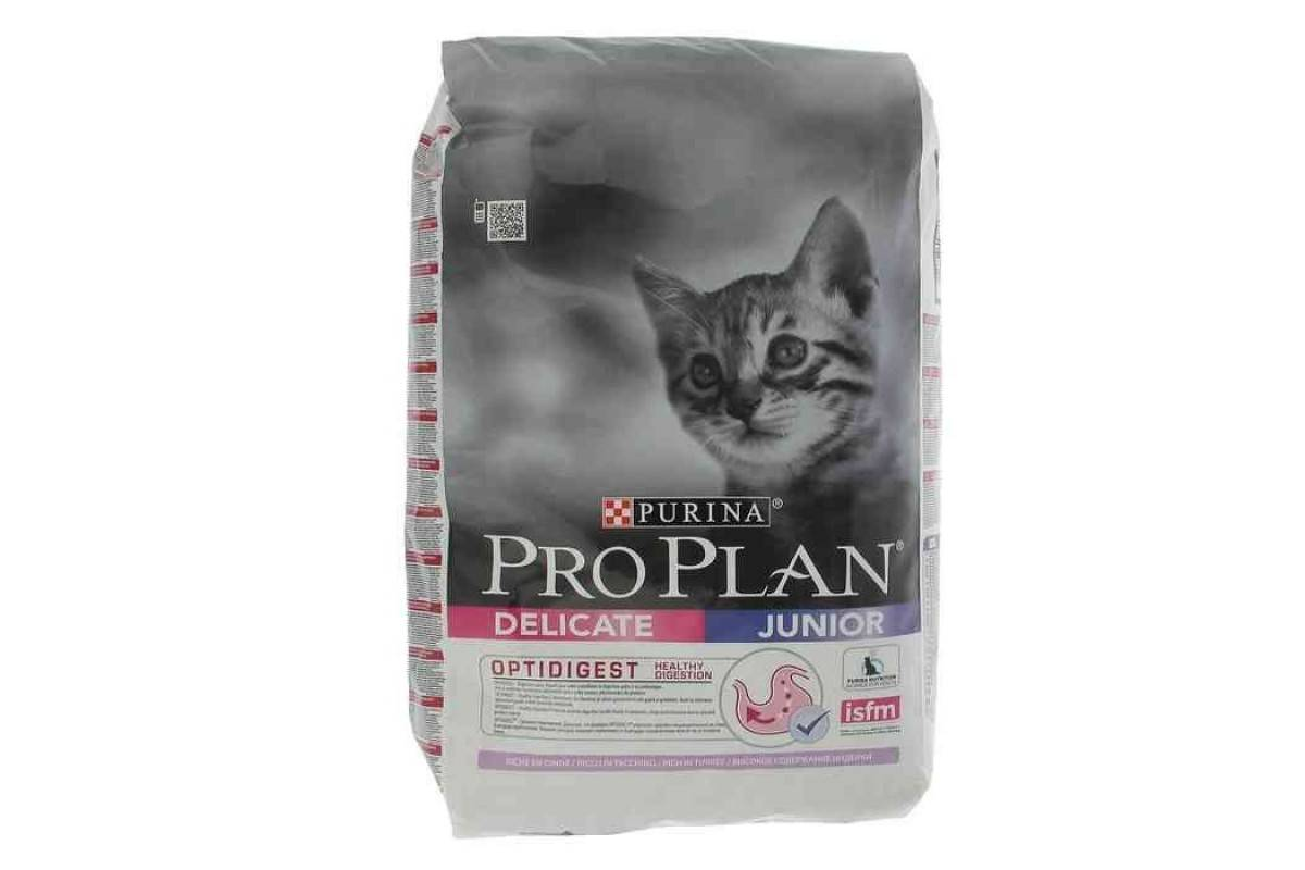 Корм для котят и кошек с чувствительным пищеварением: сухие и жидкие кошачьи корма для котов, правила выбора